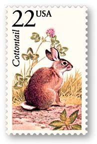 rabbit stamps - Google zoeken