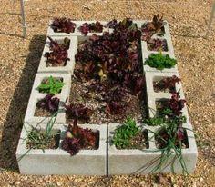 Cinder block raised garden bed - so much cheaper than wood for an herb garden Cinder Block Garden, Cinder Blocks, Raised Garden Beds, Raised Beds, Raised Gardens, Garden Benches, Fairy Gardens, Garden Projects, Garden Ideas