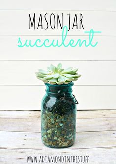Mason Jar Succulent | A Diamond in the Stuff