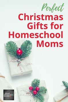 Check out these great gift ideas for homeschool moms for Christmas this year! #giftsforhomeschoolmoms #giftideasforhomeschoolingmoms #Christmasgiftsforhomeschoolmoms #giftsforhomeschoolmomsideas Black Friday Travel Deals, Homeschool Supplies, Subscription Gifts, Starbucks Gift Card, Christmas Gifts For Mom, Italy Christmas, Christmas Stuff, Christmas Ideas, Budget