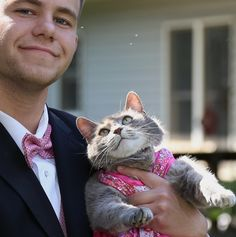 A young man who couldn't find a date to his high school dance, took his cat instead. Meet Sam and his prom date Ruby the cat!                      Courtesy: Bryan SteingardRuby the cat is a big part of the family. When Sam Steingard wasn't able to find a date from school, he knew he had already got ...