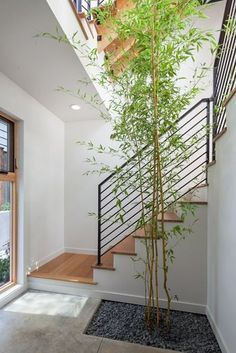 229 Best Staircase Ideas Images In 2019 Stairs Home