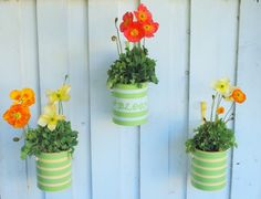 Paint can planters....From Centsational Girl....great step by step directions for dizzy broads like me :)