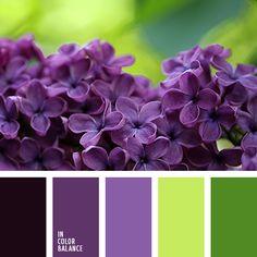 дизайнерские палитры, зеленый, зеленый и фиолетовый, оттенки зеленого, оттенки зеленого и фиолетового, оттенки сине-фиолетового, оттенки фиолетового, палитра весны, палитры для дизайнера, салатовый, светло-пурпурный цвет, фиолетовый, цвет