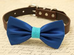 Royal blue Dog Bow Tie, Bow attached to brown dog collar, pet wedding accessory, Burlap, Some thing blue,Beach wedding,Dog lovers,Royal blue