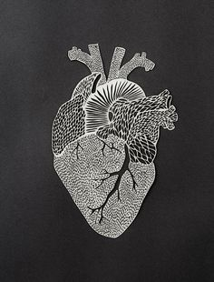 Exquisite laser-cut anatomical heart from Light & Paper Paper Cutting, Anatomical Heart Drawing, The Big Theory, Heart Artwork, Heart Sketch, Heart Illustration, 3d Studio, Paper Artwork, Anatomy Art
