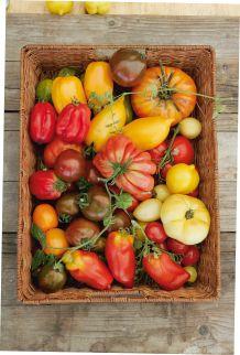 Landlust - Bunte Tomaten
