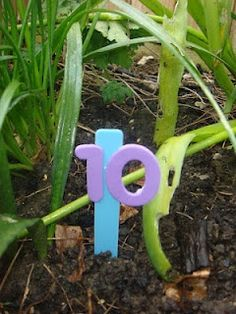 Outdoor Number Hunt. Genius fun! Could do this with letters, too.