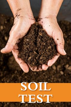 Puzzled by plant performance or your garden soil? Here are some tips for testing its composition. Your future shrubs will thank you. Garden Soil, Garden Care, Raised Garden Beds, Lawn Fertilizer Schedule, Planting Shrubs, Garden Shrubs, Organic Gardening, Gardening Tips, Soil Texture