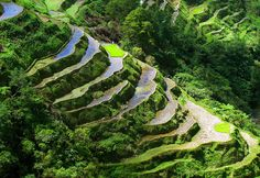 The Banaue Rice Terraces, #Philippines