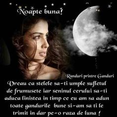 Pin by Vasile Cazan on noapte bună Meeting New People, Social Networks, Profile, Moon, User Profile, The Moon, Social Media