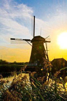 © Paulina Arcklin - Kinderdijk, The Netherlands