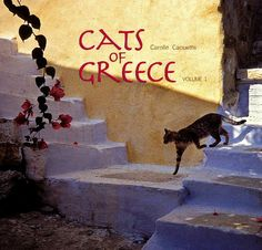 Cats of Greece - The book! ((Never knew they had one.  ))
