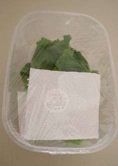 How To Make Lettuce Other Fresh Produce Last Longer - Cottage Notes Fresh Vegetables, Fruits And Veggies, Fresco, Fruit And Vegetable Storage, Food Hacks, Lettuce, Food Print, Cooking Tips, Food And Drink