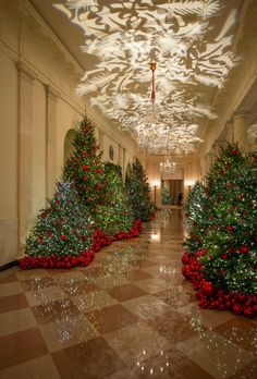 The White House Christmas decorations are back, and though they may have attracted some controversy last year, the history of the tradition is undeniably fascinating.