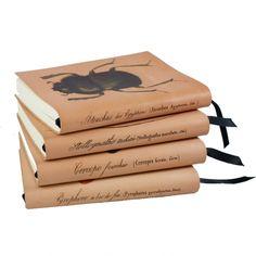 Entomology notebooks