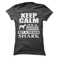KEEP CALM IT IS A BRAZILIAN TERRIER - #student gift #hoodies/jackets. BUY-TODAY => https://www.sunfrog.com/Pets/KEEP-CALM-IT-IS-A-BRAZILIAN-TERRIER-Ladies.html?id=60505