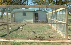 How To Build a chicken coop from free pallets - living Green And Frugally - I want this big of an outdoor run fenced/top fenced too.