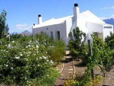 Die Kliphuisie - A self-catering whitewashed stone cottage in the Breerivier Weekend Getaways, Road Trips, South Africa, Catering, Bucket, Cottage, Stone, Wood, Holiday