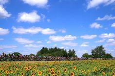 Le Tour de France 2017 Stage 4