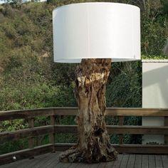 tronc d'arbre                                                       …