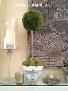 DIY Williams-Sonoma Knockoff Topiaries-Lovely!