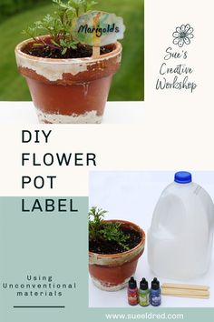 How to create a Flower Pot Label using a milk jug, alcohol ink and the label die from Sizzix/Eileen Hull. Designed by Sue's Creative Workshop www.sueeldred.com #alcoholink #flowerlabel @eileen_hull @Sizzix Flower Pots, Flowers, Creative Workshop, Milk Jug, Summer Crafts, Decoration, Planter Pots, Alcohol, Diy