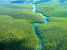 """UNDISCOVERED GEM"" Guyana is home to some of the world's most pristine rain-forests: almost 80 per cent of the country is covered by tropical jungle."