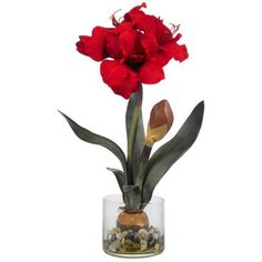 Amaryllis Silk Plant With Round Vase - You no longer have to worry about planting bulbs in the spring or removing them from your garden in the fall with this Amaryllis Silk Plant With Round Vase. This gorgeous red Amaryllis is the perfect finishing decor for both the holiday season and year round.