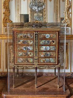 Médailler de Louis XVI - Oak, mahogany, ebony, wax wings of butterflies, plants, feathers and gilded bronze