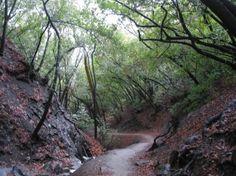 Nojoqui Falls Trail, Solvang CA