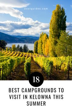 One of the top things to do in Kelowna British Columbia (Canada) is to go camping, especially during summer vacations. Check out our list of the 18 best campgrounds to visit in Kelowna, with their locations conveniently plotted on a map! Some campsites are located close to a beach or offer great hiking and view opportunities. Most can be accessed in both the spring and fall as well (depending on weather). | Kelowna British Columbia travel | #Kelowna #BritishColumbia #Canada #travel Columbia Travel, British Columbia, Summer Vacations, Summer Travel, Things To Do In Kelowna, Best Campgrounds, Best Places To Camp, Canadian Travel, Park Resorts