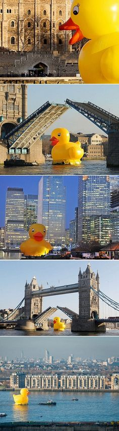 Last month, to encourage Londoners to have more fun and smile more often the city created this giant rubber ducky and let it loose all over the River Thames.