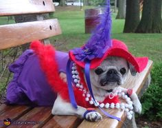 Red Hat Society - 2012 Halloween Costume Contest