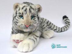 Seymour. White tiger cub. By Anastasia Arzhaeva - Bear Pile