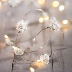 Browse Battery Operated Fairy Lights from We have a whole host of colours, lengths and sizes. All products come with a 24 months guarantee. Fairy Lights Photos, Fairy Lights Room, Flower Fairy Lights, Outdoor Fairy Lights, Indoor String Lights, White Rose Flower, White Roses, Hipster Bedroom Decor, Hipster Rooms
