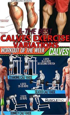Build Massive Calves with this workout and the Ultimate BULKING STACK that comes with 6 Legal Steroids for Maximum Muscle Gains without Side Effects. Calf Muscle Workout, Muscle Fitness, Gain Muscle, Leg Day Workouts, Gym Workout Tips, Easy Workouts, Fitness Workouts, Calf Muscle Anatomy, Best Calf Exercises