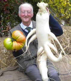 15 Giant vegetables you wont believe are real. Weird Fruit, Funny Fruit, Balcony Herb Gardens, Farm Gardens, Funny Vegetables, Fruits And Vegetables, Beautiful Fruits, Different Vegetables, Exotic Fruit