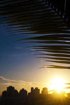 Sunset time, Barra da Tijuca, Rio.
