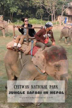 UNESCO World Heritage Site Chitwan National Park is the most popular destination in Nepal. No way to miss the jungle safari at Chitwan National Park. Africa Travel, India Travel, Travel Nepal, Ways To Travel, Travel Tips, Africa Destinations, Jungle Safari, Ultimate Travel, Solo Travel