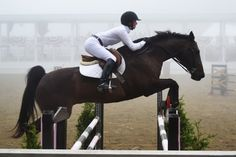 A young rider & her show jumping horse