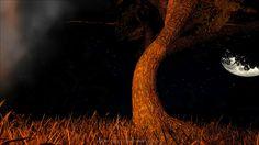 Nachtfoto aus der Serie #ArkOneLife. Geschossen in einer romantischen Nacht auf einer einsamen Insel am Lagerfeuer. Link führt zur entsprechenden Folge #romantik