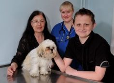 A dog from Stoke-on-Trent has survived a life-threatening illness thanks to vets and nurses at the city's PDSA PetAid hospital.