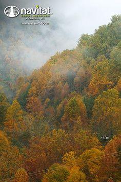 Fall Fog over Lirio Platform at Navitat Canopy Adventures in Asheville #Navitat