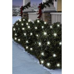 Holiday Time 70-Count LED Net Christmas Lights, Pure White