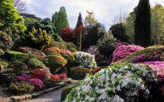 Leonardslee Gardens, Lower Beeding, West Sussex, UK, RH13 6PP | Leonardslee Rock Garden with flowering Japanese azaleas and rhododendrons in Spring (10 of 14)