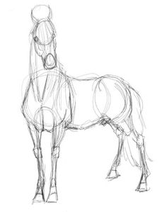 Horse Drawing Tutorial - Horse Tutorial by Droemar on DeviantArt Horse Drawings, Pencil Art Drawings, Art Drawings Sketches, Realistic Drawings, Animal Drawings, Drawing Animals, Drawing Art, Drawing Tips, Horse Drawing Tutorial