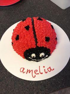 Ladybug 1st birthday smash cake