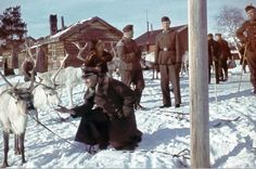 """German fieldpriest petting a reindeer.Tagged """"German invasion of Finland"""" at link. Photos are from a book published by William Hakvaag on WWII in Norway."""