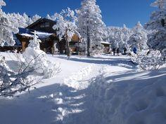 黒百合ヒュッテ。冬の天狗岳|八ヶ岳登山ルートガイド。Japan Alps mountain climbing route guide